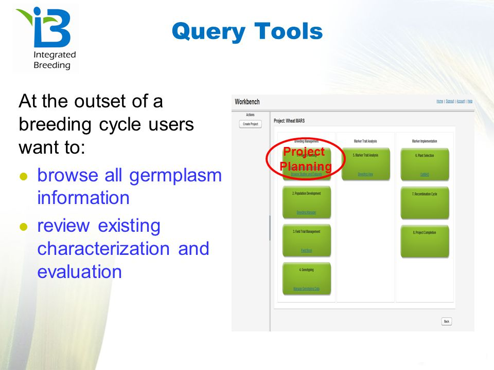 Query Tools At the outset of a breeding cycle users want to: