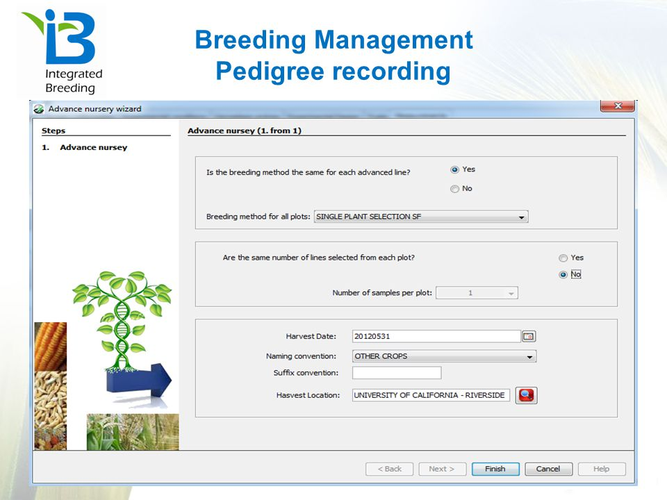 Breeding Management Pedigree recording