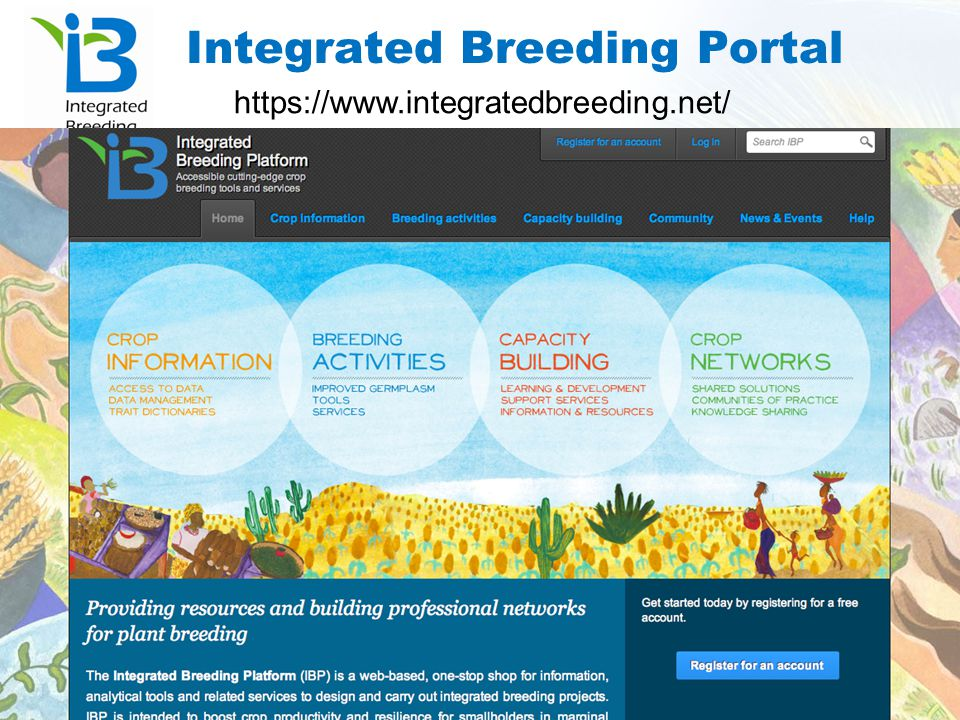 Integrated Breeding Portal