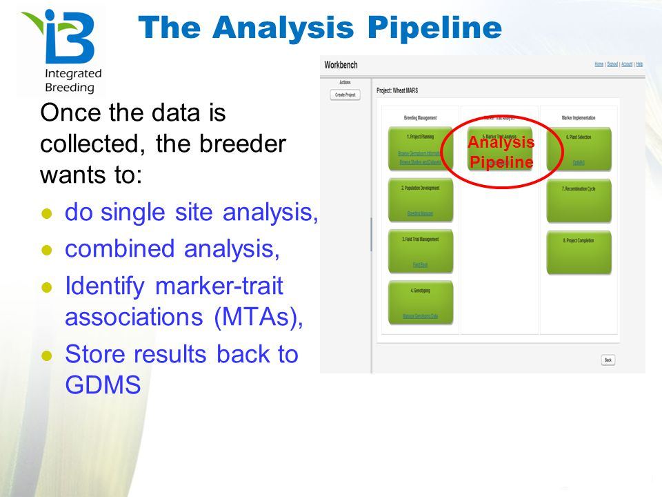 The Analysis Pipeline Once the data is collected, the breeder wants to: do single site analysis, combined analysis,