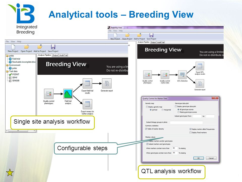 Analytical tools – Breeding View