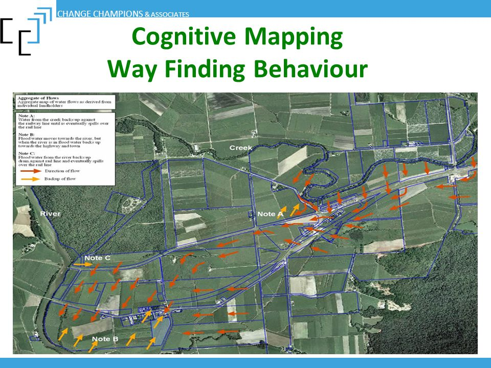 Cognitive Mapping Way Finding Behaviour
