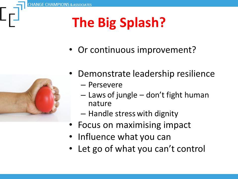 The Big Splash Or continuous improvement