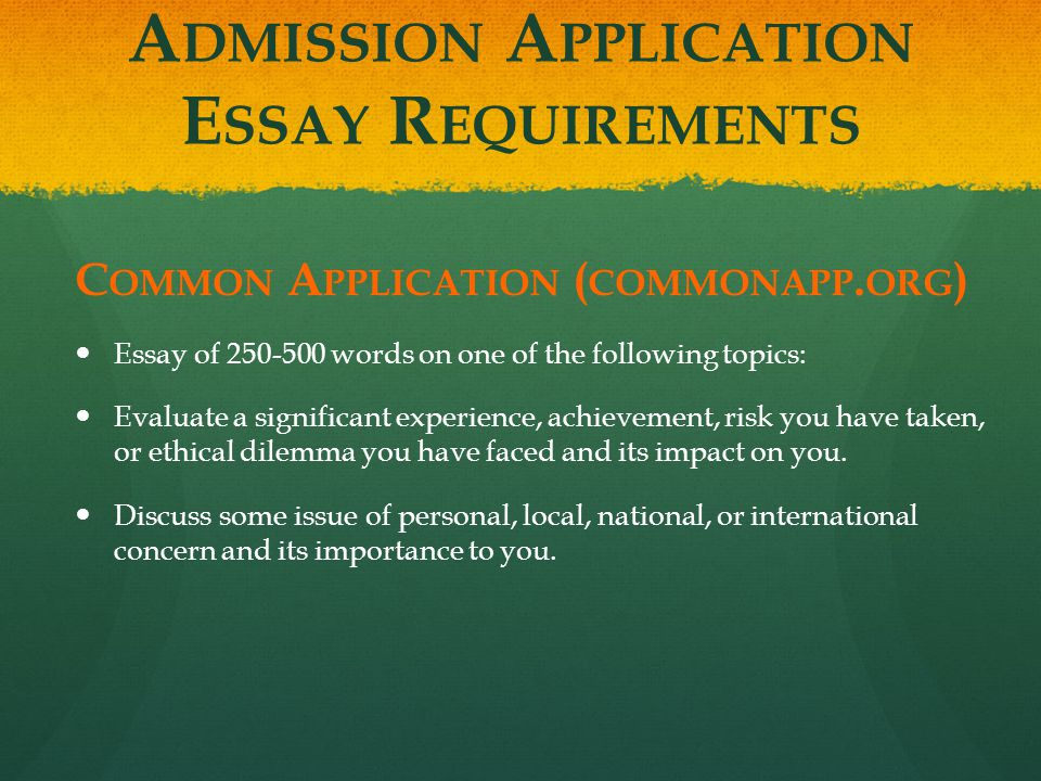 Application essay requirements