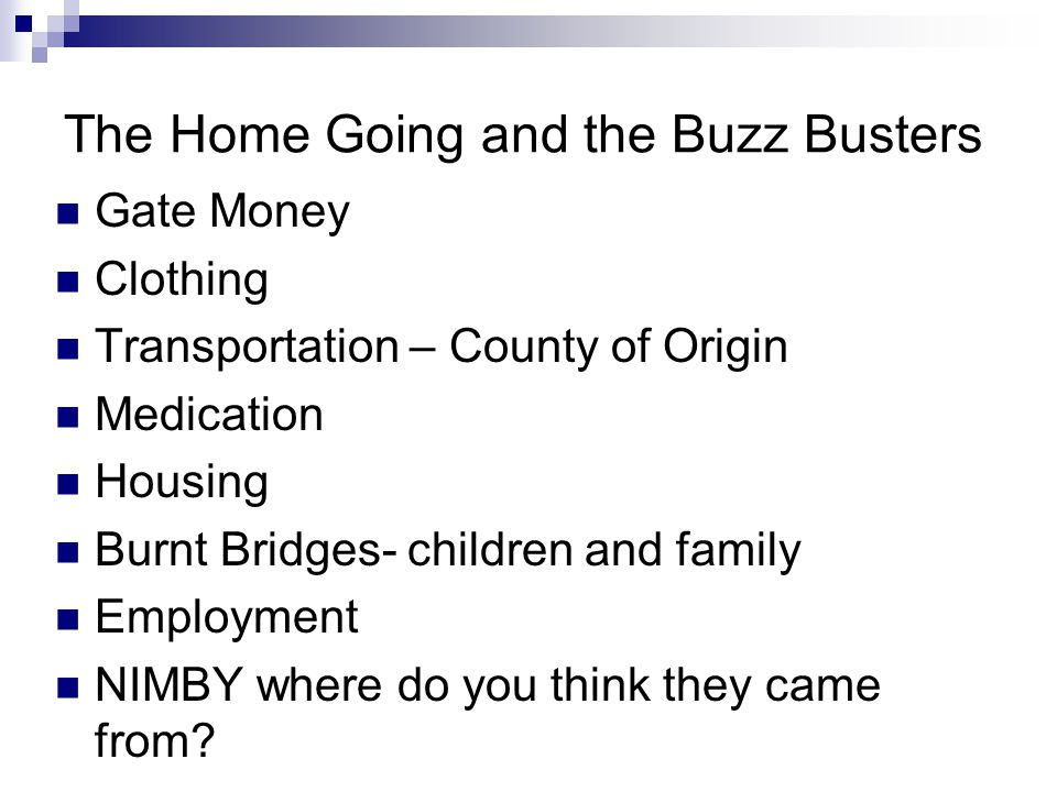 The Home Going and the Buzz Busters