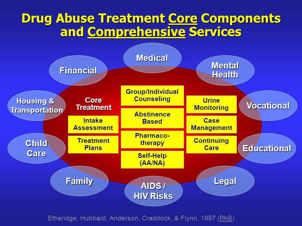 Drug Abuse Treatment Core Components and Comprehensive Services