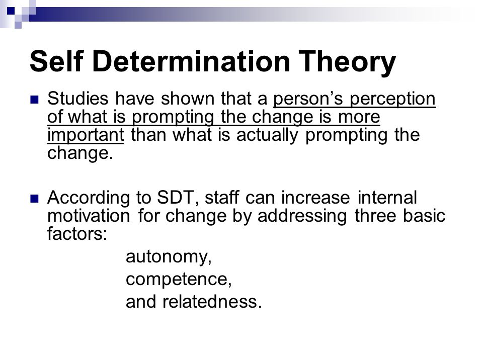 Self Determination Theory