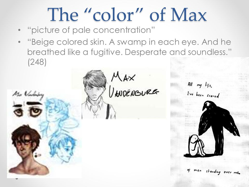 The color of Max picture of pale concentration