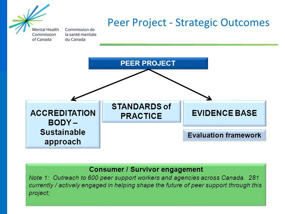 Peer Project - Strategic Outcomes