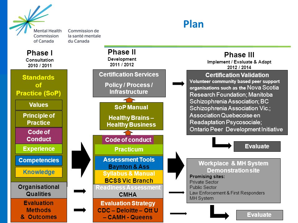 Plan Phase I Phase II Phase III Standards of Practice (SoP)