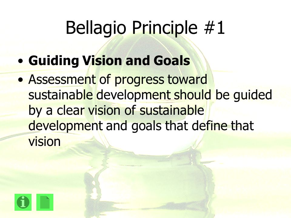 Bellagio Principle #1 Guiding Vision and Goals