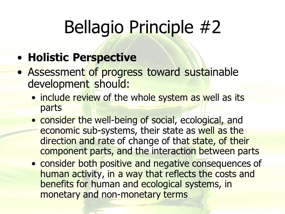 Bellagio Principle #2 Holistic Perspective