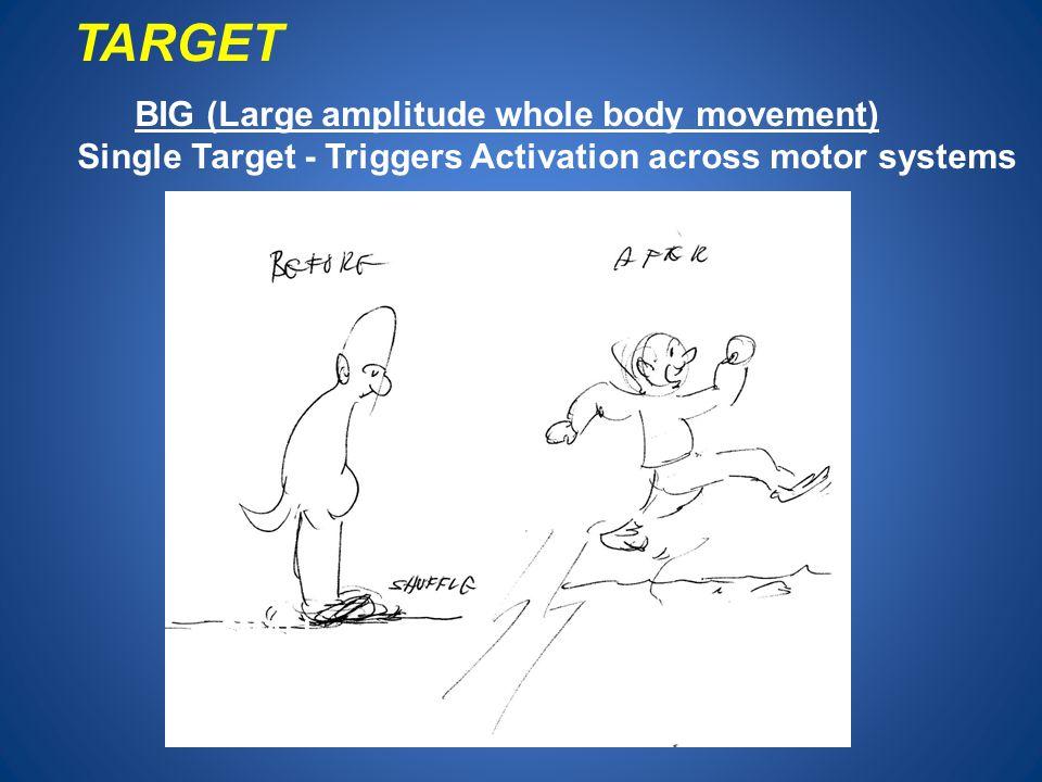 TARGET BIG (Large amplitude whole body movement)