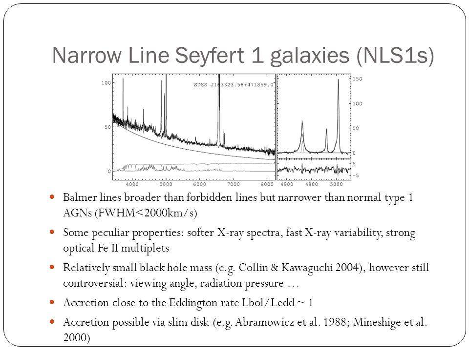 Narrow Line Seyfert 1 galaxies (NLS1s)