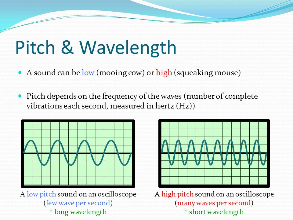 Pitch & Wavelength A sound can be low (mooing cow) or high (squeaking mouse)