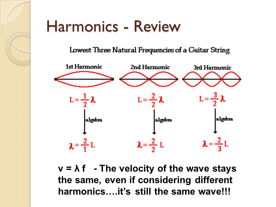 Harmonics - Review v = λ f - The velocity of the wave stays the same, even if considering different harmonics….it's still the same wave!!!