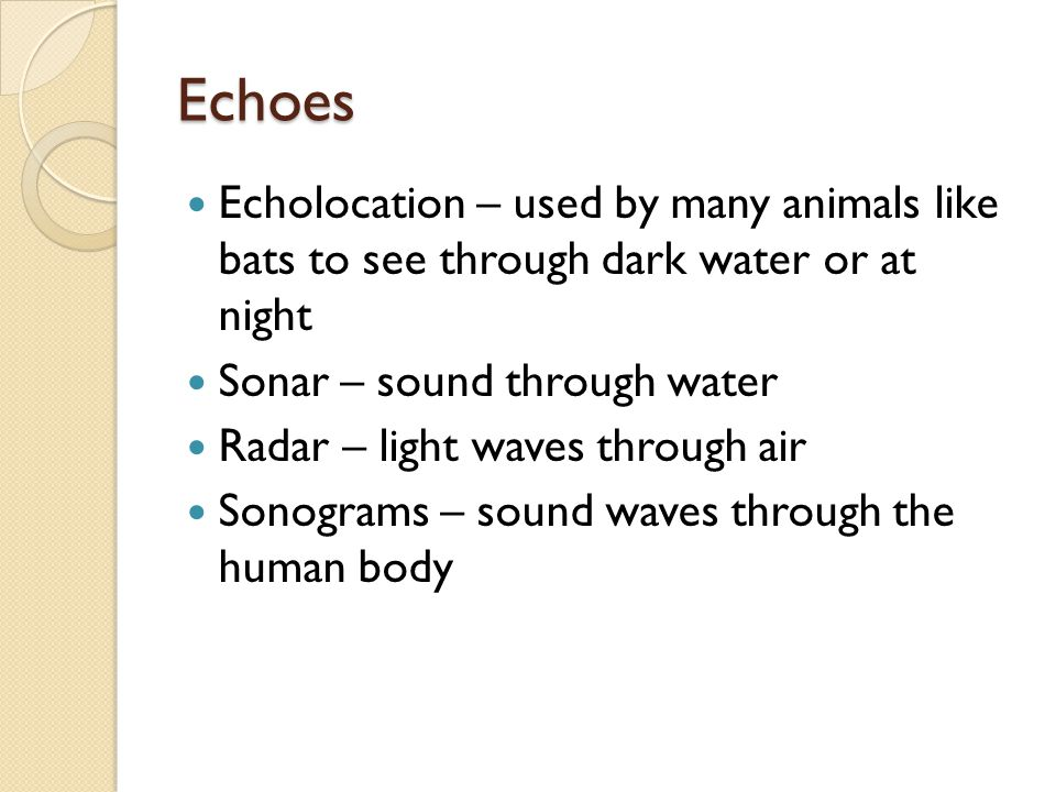 Echoes Echolocation – used by many animals like bats to see through dark water or at night. Sonar – sound through water.
