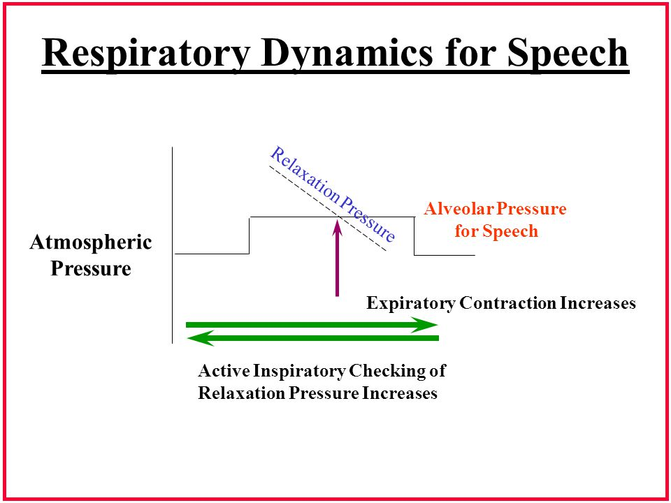 Respiratory Dynamics for Speech