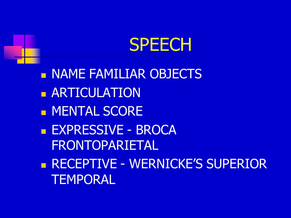 SPEECH NAME FAMILIAR OBJECTS ARTICULATION MENTAL SCORE