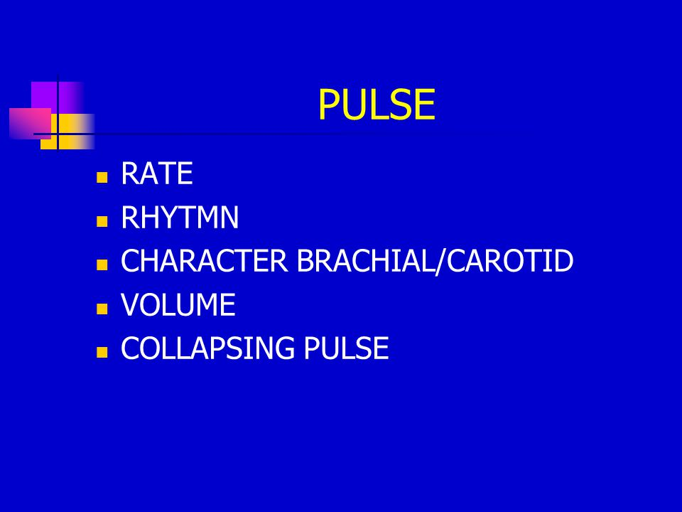 PULSE RATE RHYTMN CHARACTER BRACHIAL/CAROTID VOLUME COLLAPSING PULSE