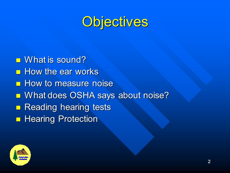 Objectives What is sound How the ear works How to measure noise