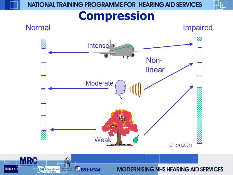 Compression Normal Impaired Non-linear Intense Moderate Weak