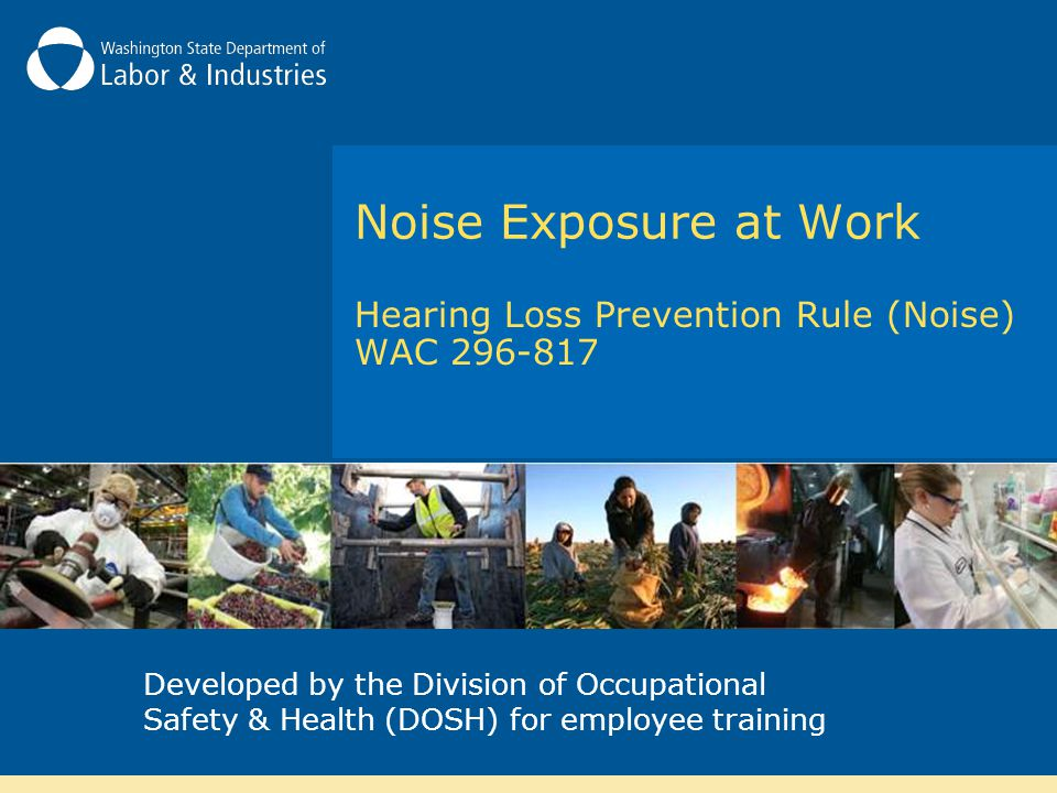 Hearing Loss Prevention Rule (Noise) WAC 296-817