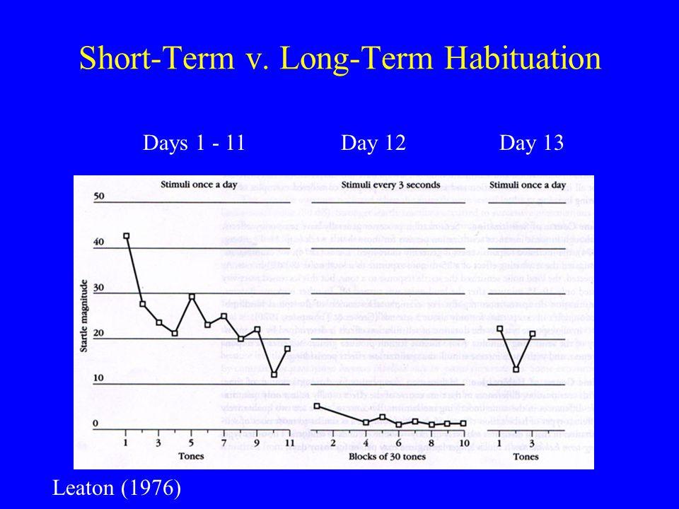 Short-Term v. Long-Term Habituation