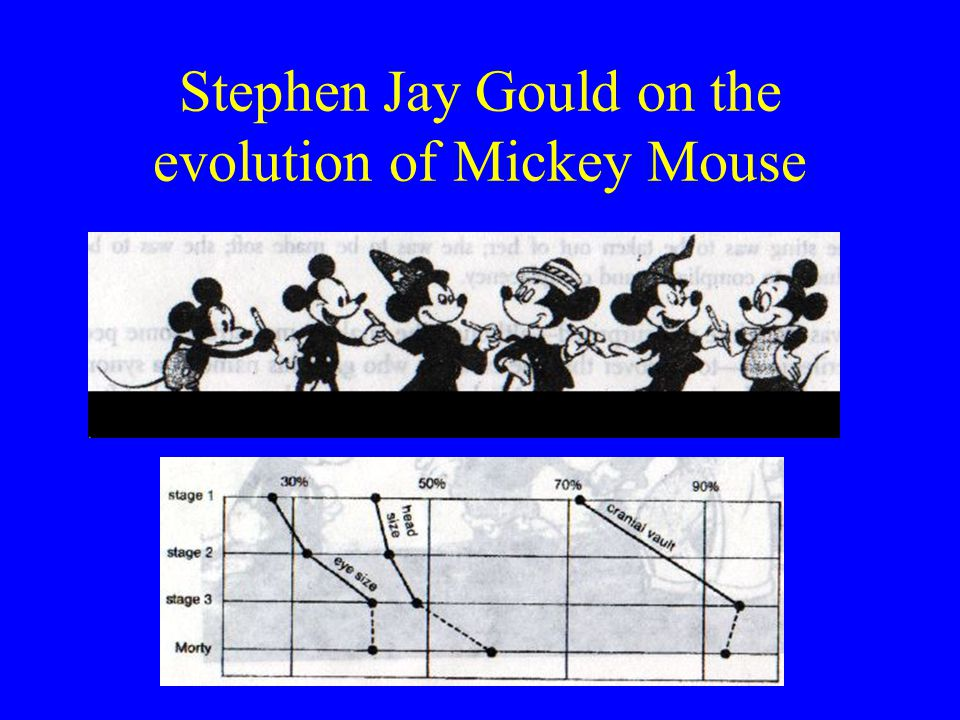 Stephen Jay Gould on the evolution of Mickey Mouse