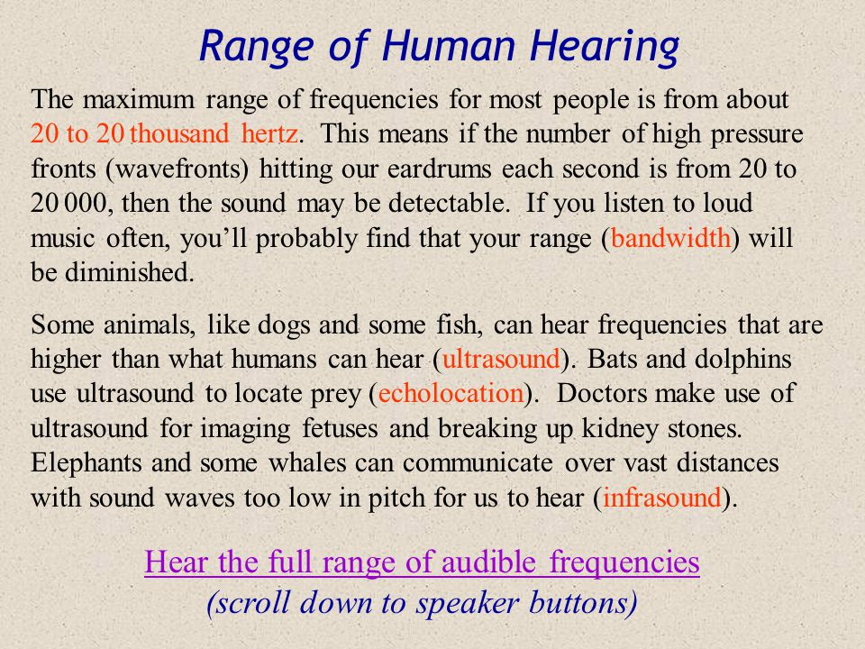Range of Human Hearing