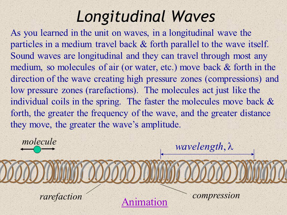 Longitudinal Waves Animation wavelength, 