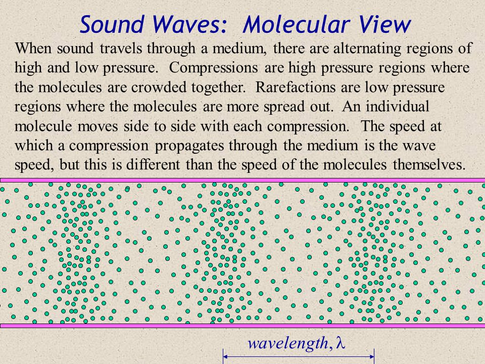 Sound Waves: Molecular View