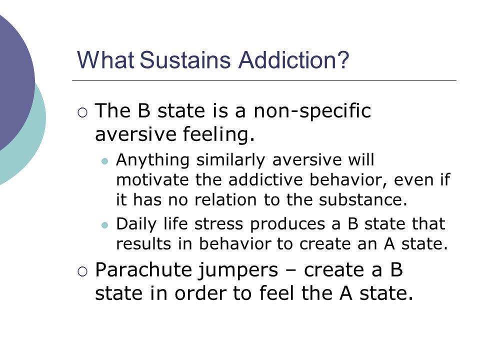 What Sustains Addiction