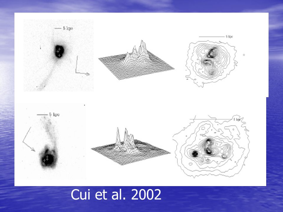 Cui et al. 2002