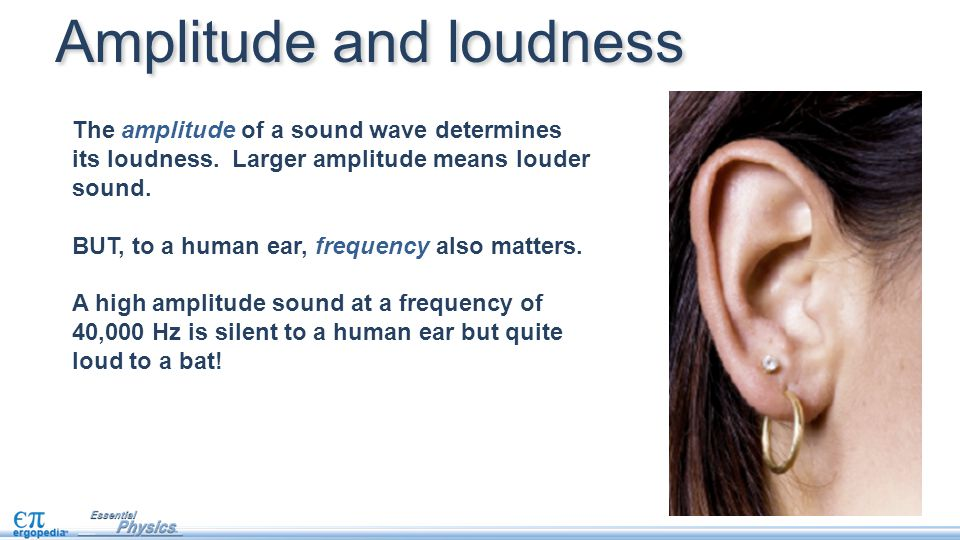 Amplitude and loudness