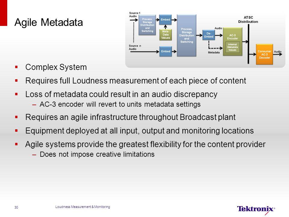 Agile Metadata Complex System