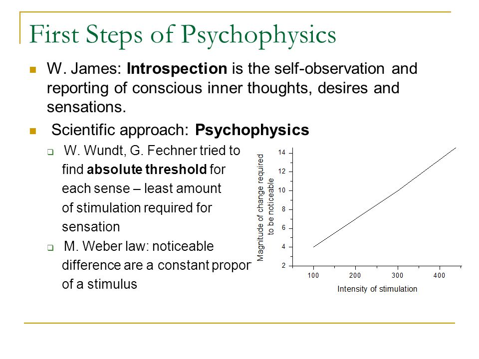 First Steps of Psychophysics