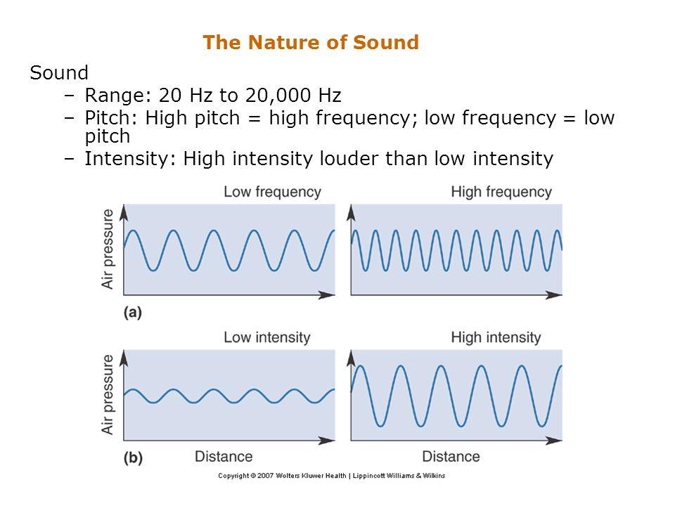 The Nature of Sound Sound. Range: 20 Hz to 20,000 Hz. Pitch: High pitch = high frequency; low frequency = low pitch.