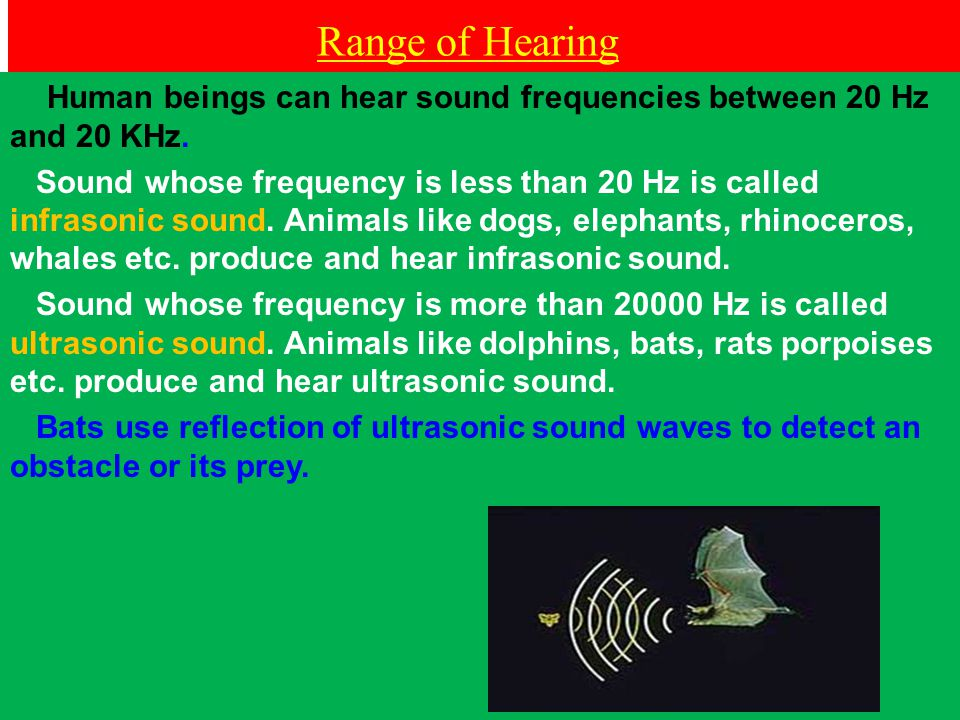 Range of Hearing Human beings can hear sound frequencies between 20 Hz and 20 KHz.