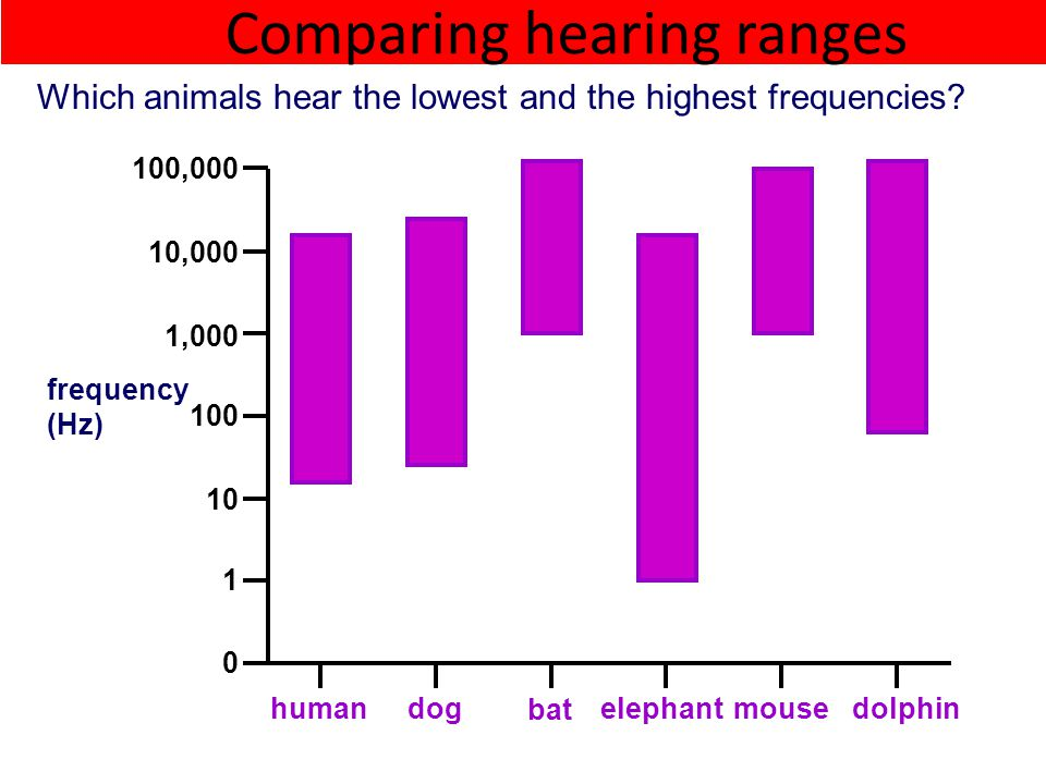 Comparing hearing ranges