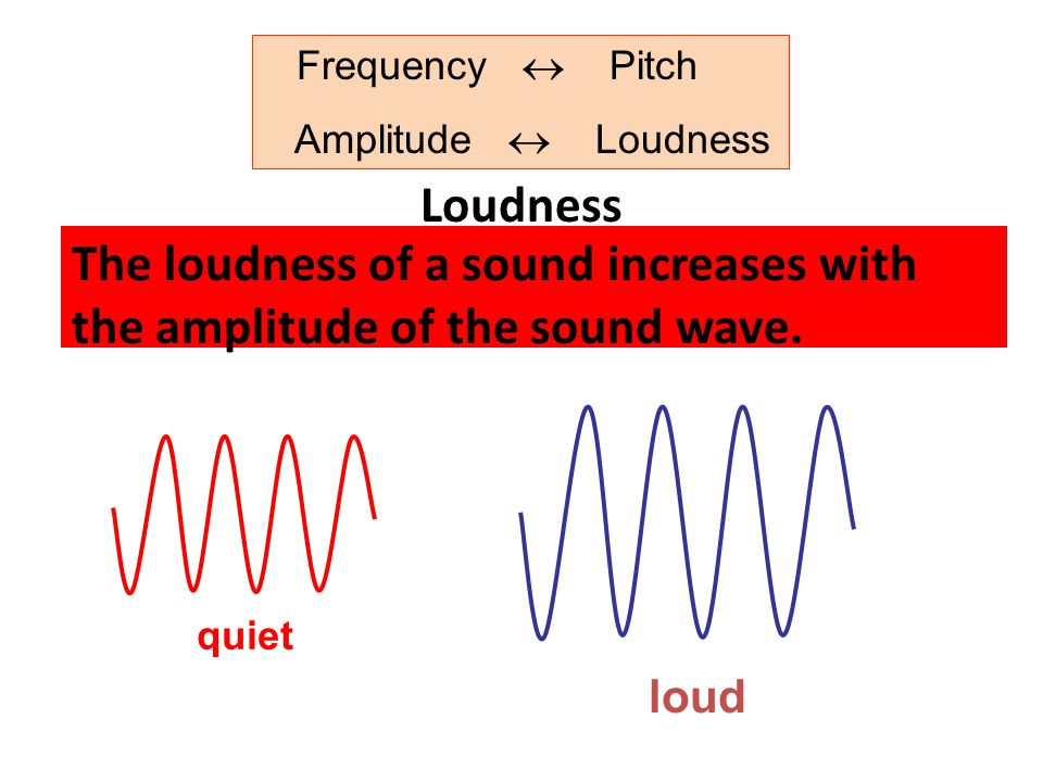 Frequency  Pitch Amplitude  Loudness. Loudness. The loudness of a sound increases with the amplitude of the sound wave.