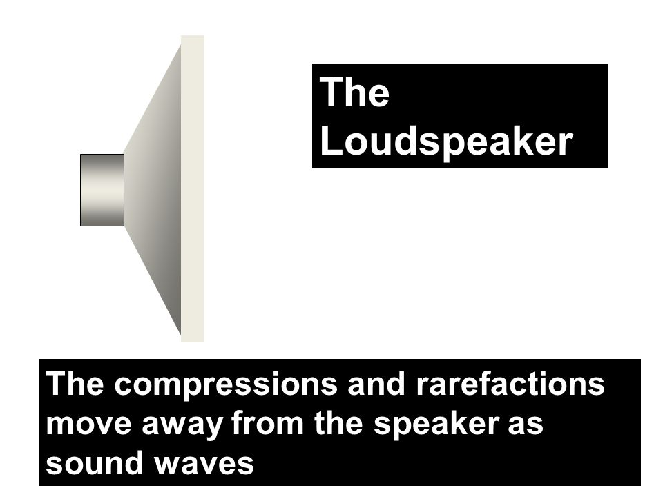The Loudspeaker The Loudspeaker
