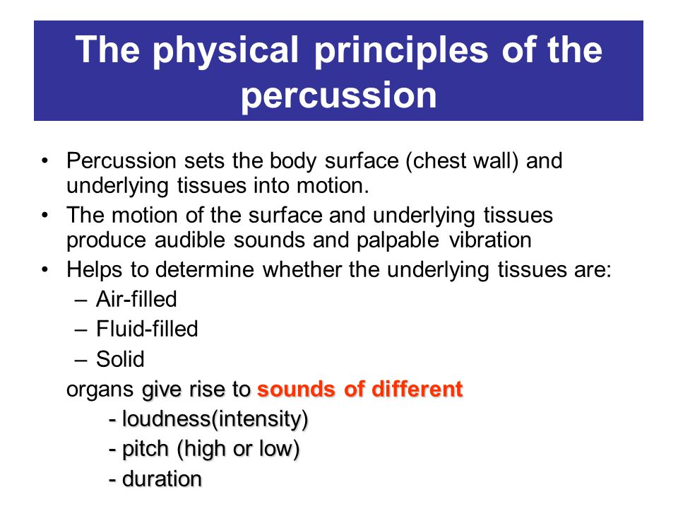 The physical principles of the percussion