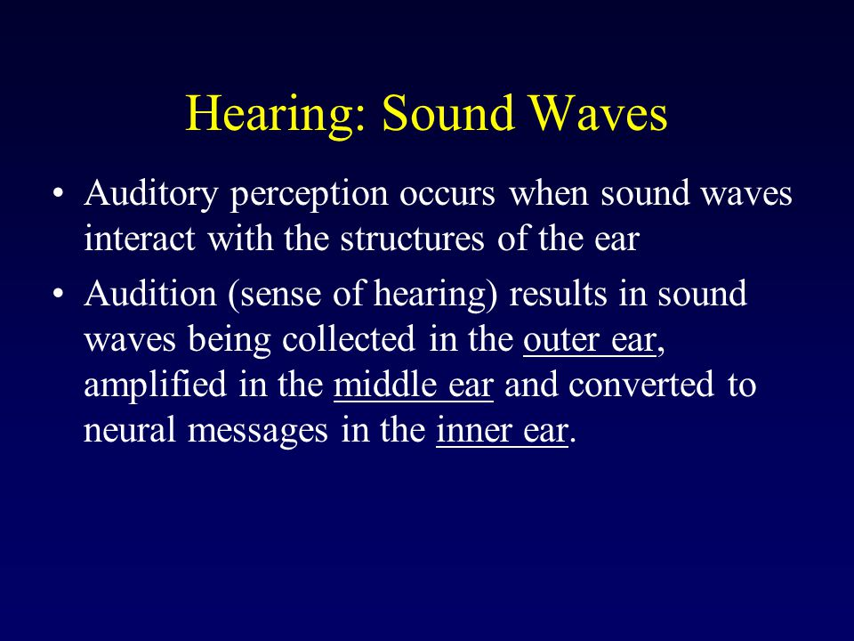 Hearing: Sound Waves Auditory perception occurs when sound waves interact with the structures of the ear.