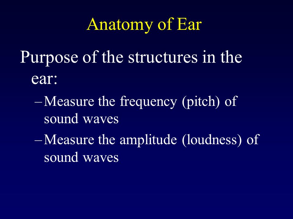 Purpose of the structures in the ear: