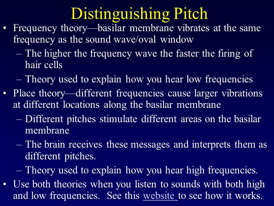 Distinguishing Pitch Frequency theory—basilar membrane vibrates at the same frequency as the sound wave/oval window.
