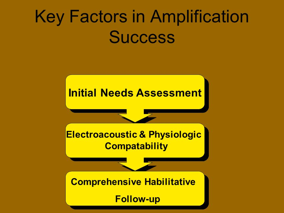 Key Factors in Amplification Success