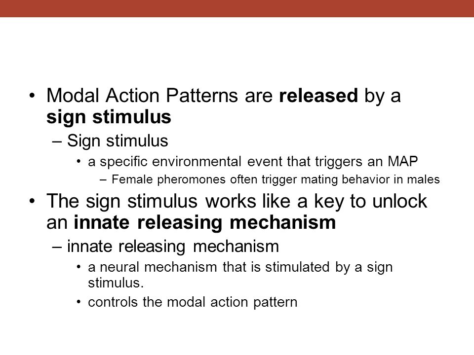 Modal Action Patterns are released by a sign stimulus