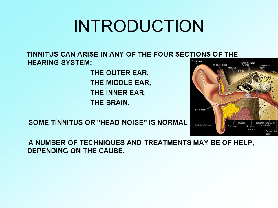 INTRODUCTION TINNITUS CAN ARISE IN ANY OF THE FOUR SECTIONS OF THE HEARING SYSTEM: THE OUTER EAR, THE MIDDLE EAR,