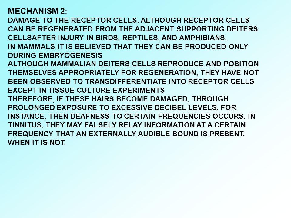 MECHANISM 2: